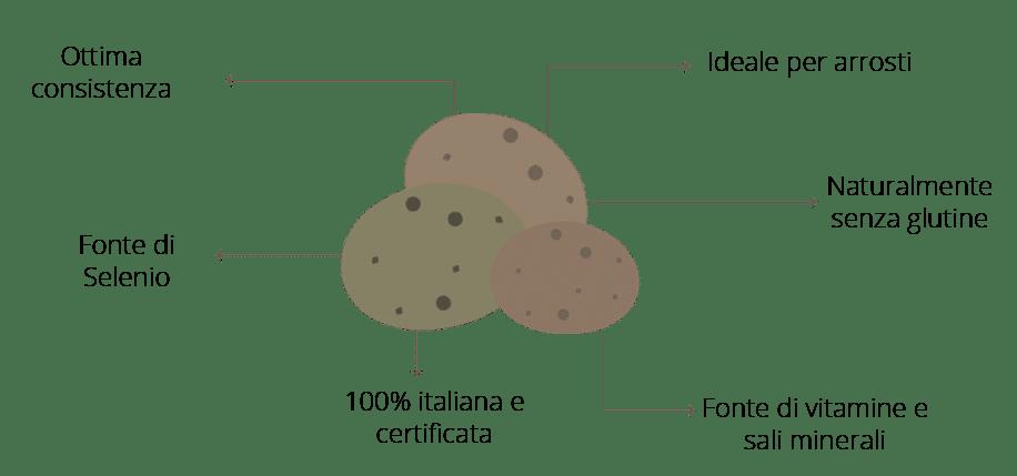 I Benefici della patata mini Selenella