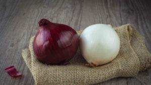 Cipolle rosse e bianche Selenella