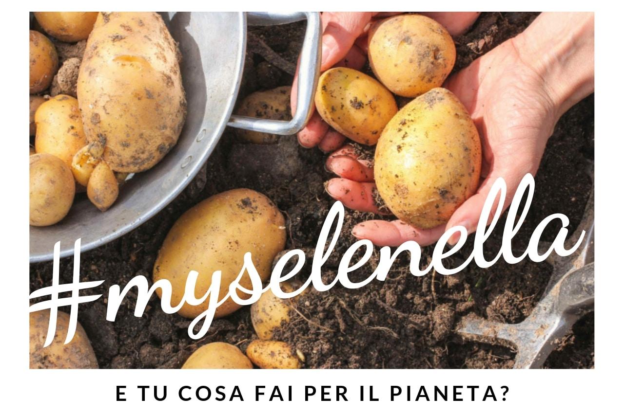 Cos'è #myselenella? - Il Blog di Selenella