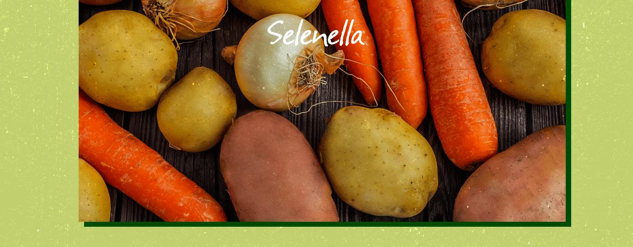 Alimentazione sostenibile e ortaggi di stagione - Il Blog di Selenella
