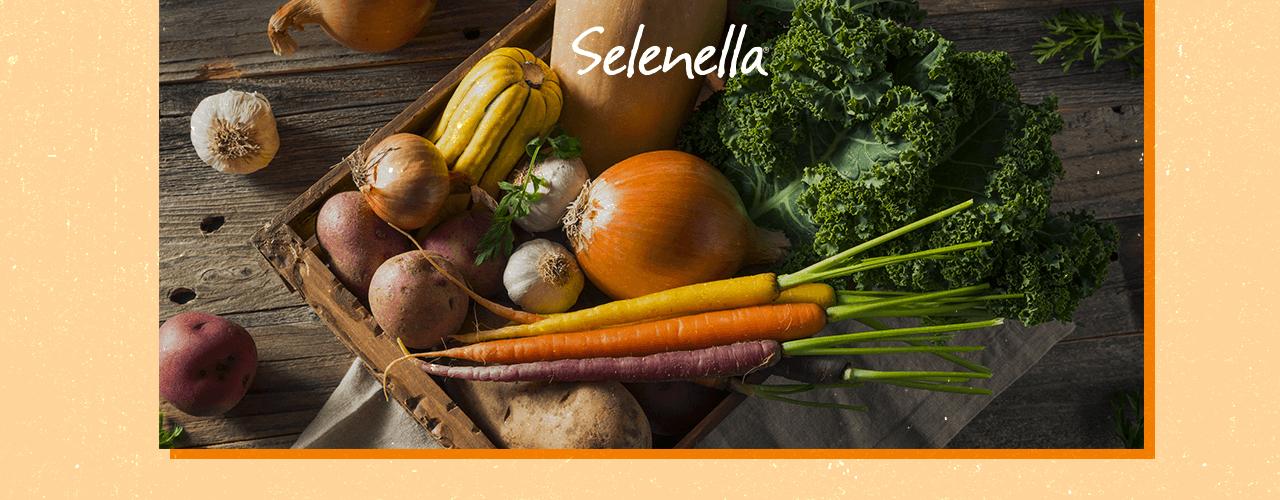 Selenio: benefici per i capelli e la cura del corpo - Il Blog di Selenella