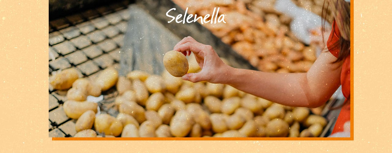 Come si ottengono le certificazioni di qualità nel settore agroalimentare? - Il Blog di Selenella